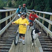 Family At Kettle Valley Trestle Medium