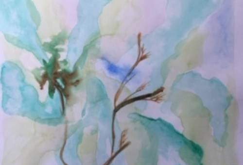 Watercolour-Carin Moolman